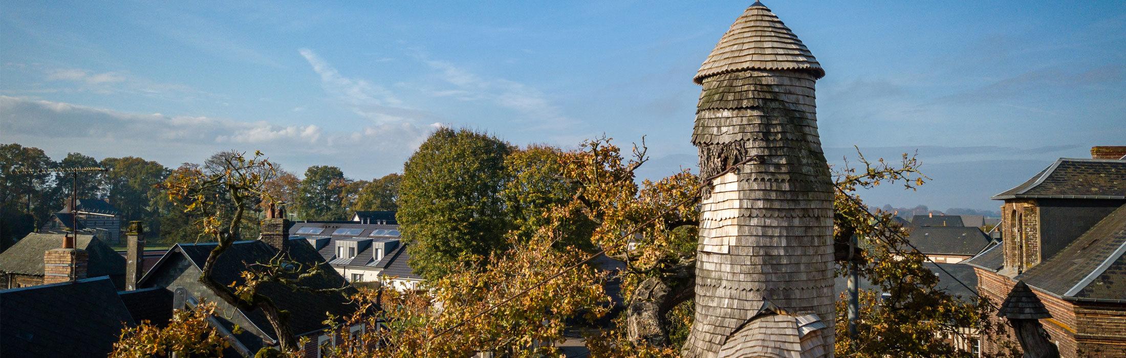 A Allouville-Bellefosse, à côté de l'église du village,se trouve le plus vieux chêne deFrance. Onestime son âge à environ 1200 1